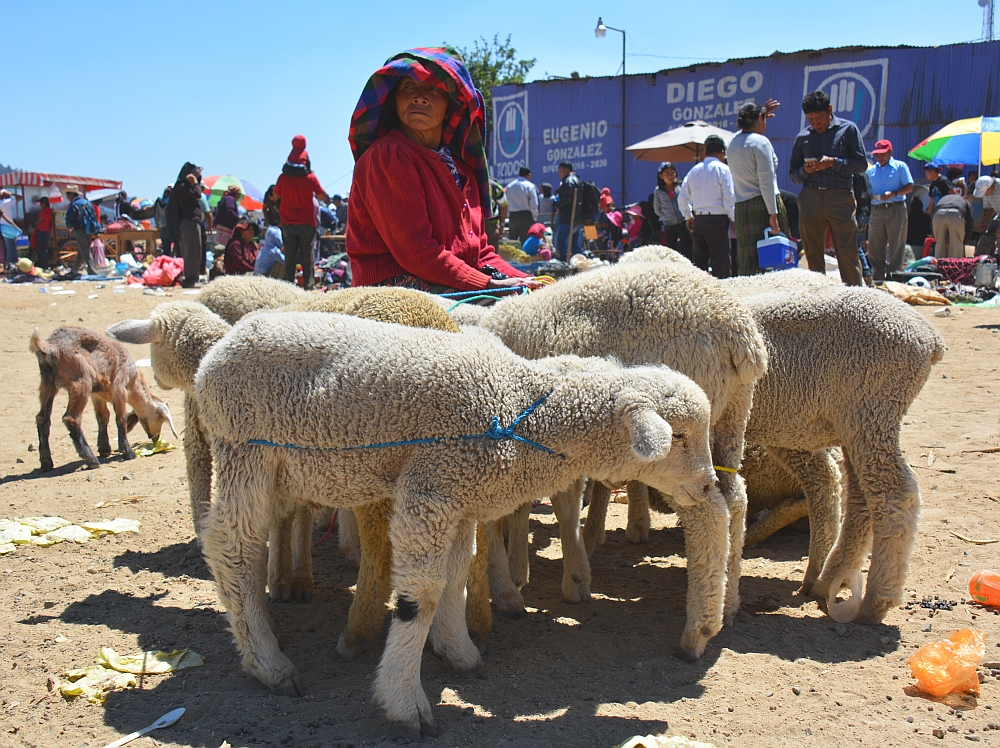 Van het gebaande pad in Guatemala markt van San Francisco el Alto