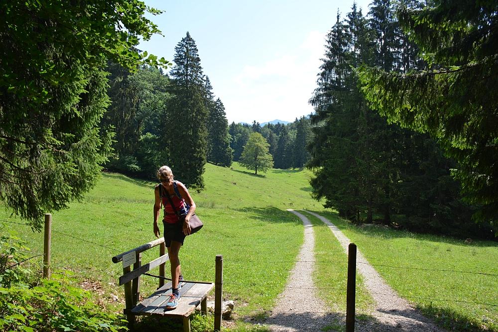 bergwandeling naar Piesenhausener Hochalm hekje