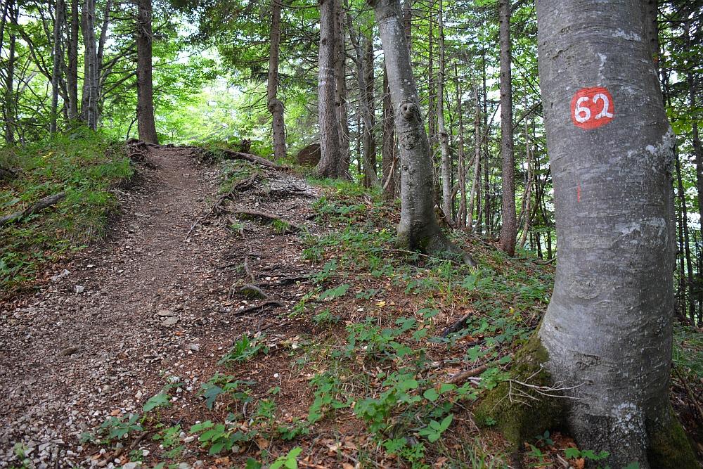 afdaling van de Hochplatte, route 62