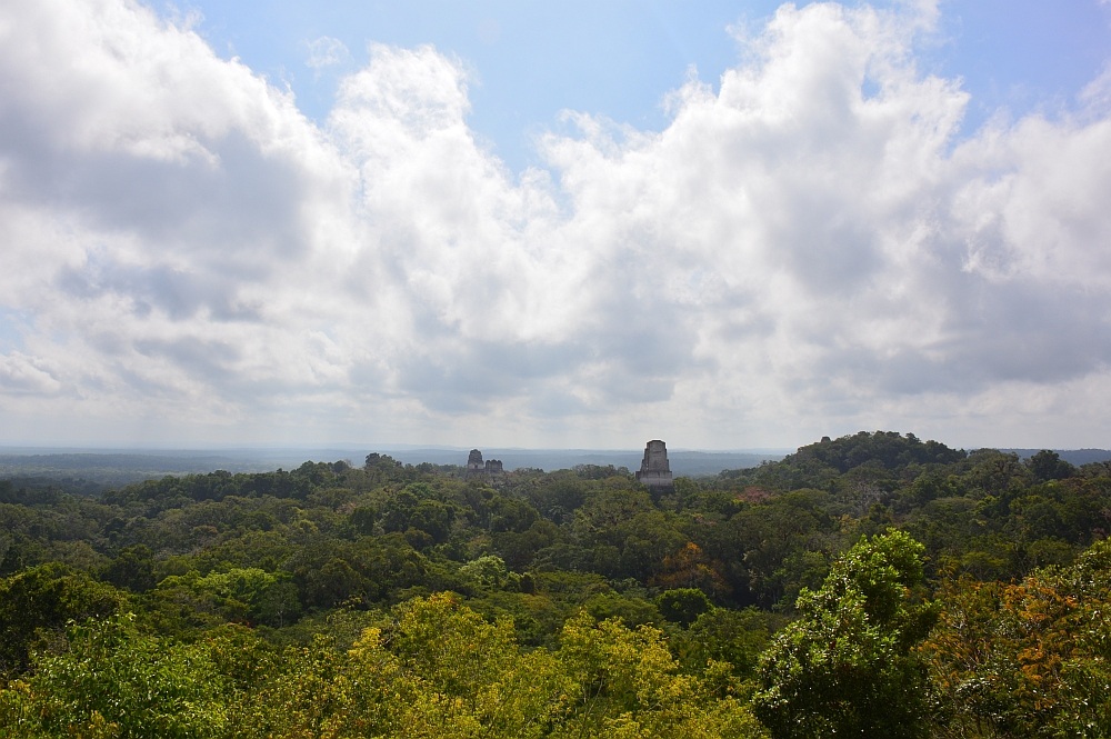 tempels van Tikal uitzicht van tempel IV