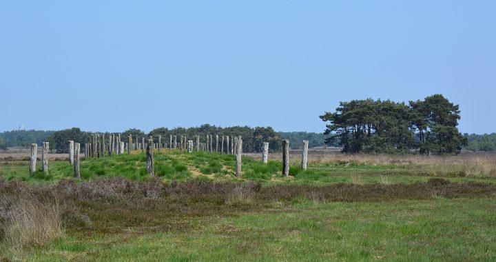 wandeling bij Goirle,grafheuvel Regte Heide