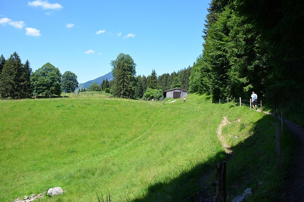 Smokkelaarsroute in de Beierse Alpen weg langs bos