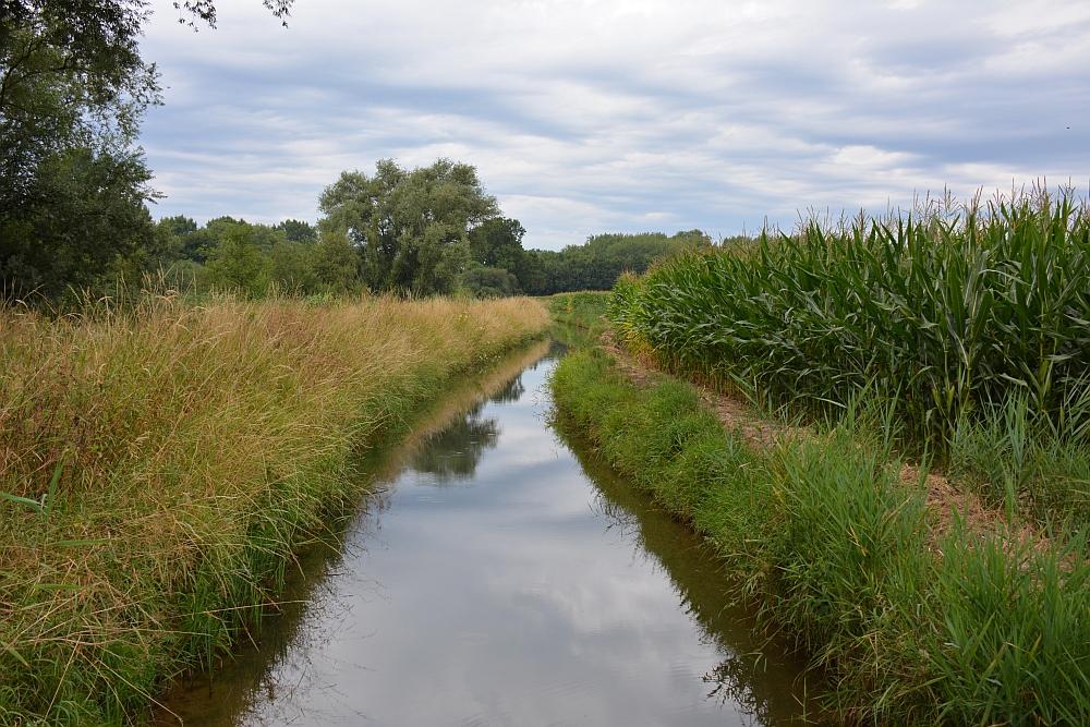 Walk of Wisdom van Hernen naar Winssen