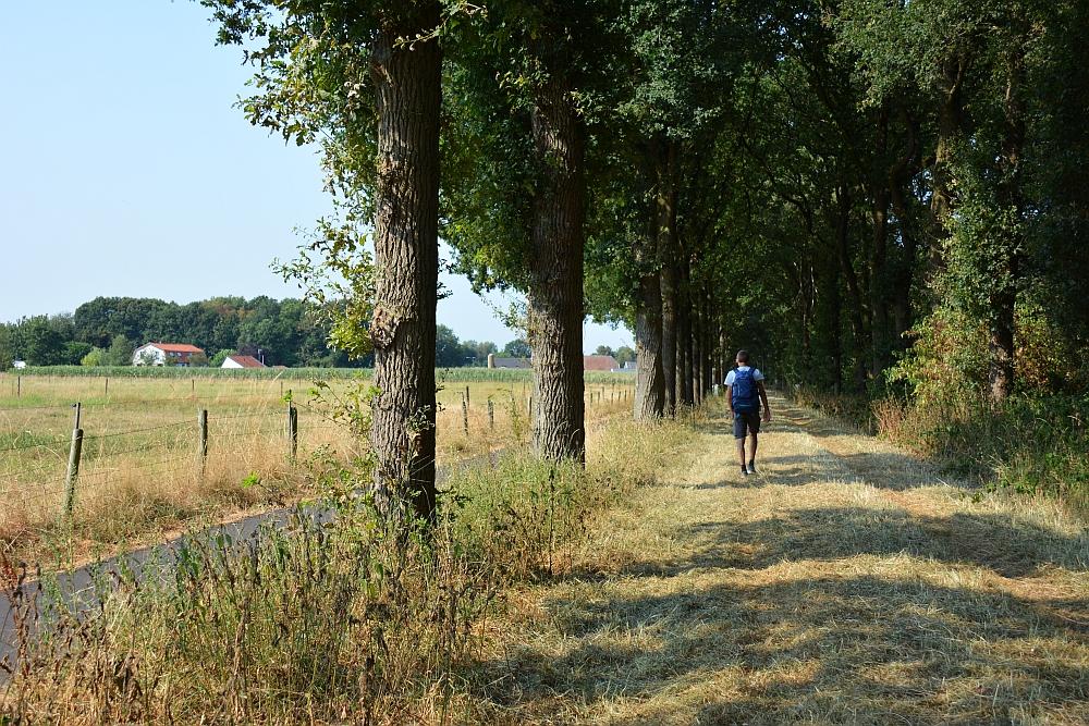 Walk of Wisdom van Malden naar Grave