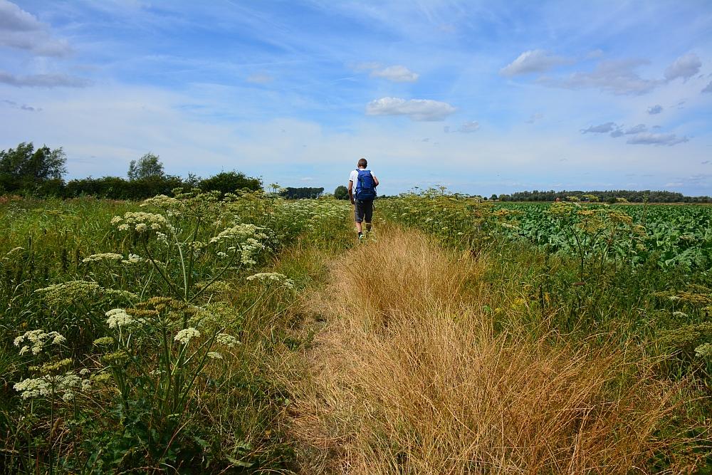Walk of Wisdom van Nijmegen naar Groesbeek door de velden