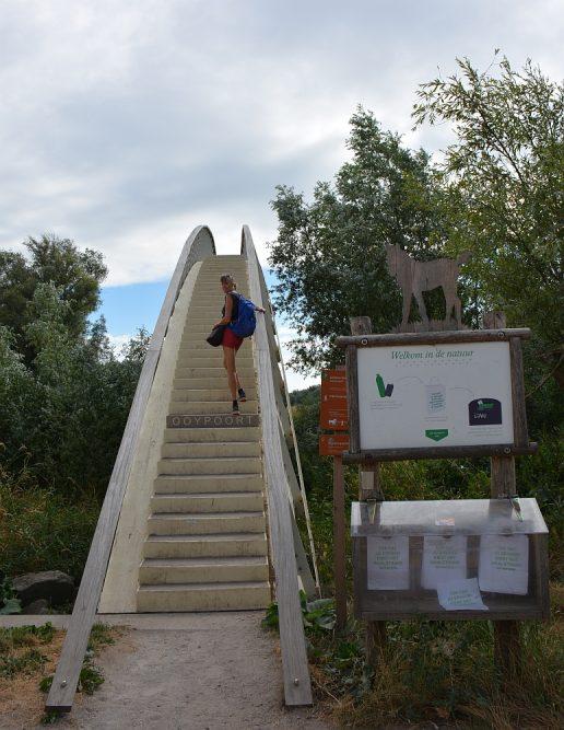 Walk of Wisdom van Nijmegen naar Groesbeekvoetgangersbrug naar Ooijpolder