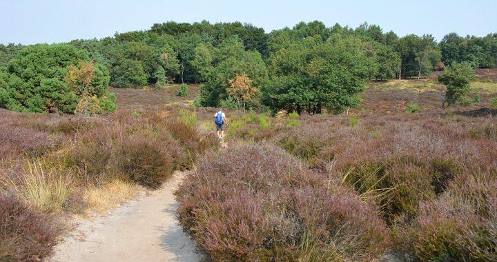 Walk of Wisdom van Sint Jansberg naar Malden