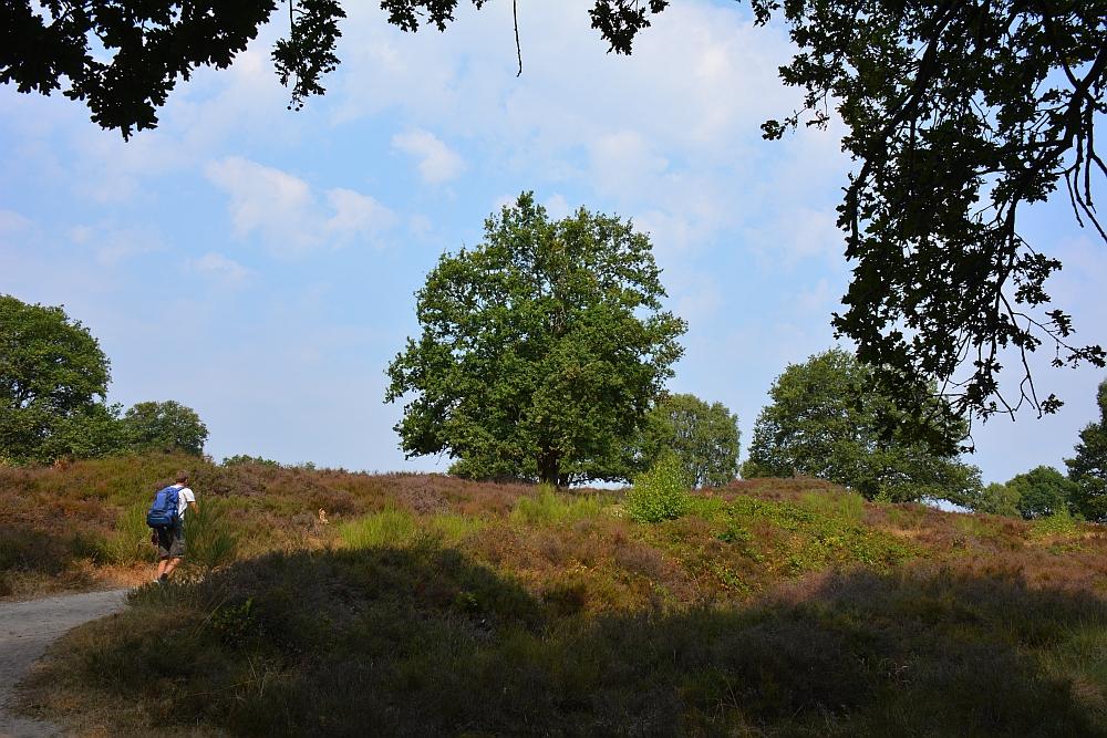 Walk of Wisdom van Sint Jansberg naar Malden, Mookerheide