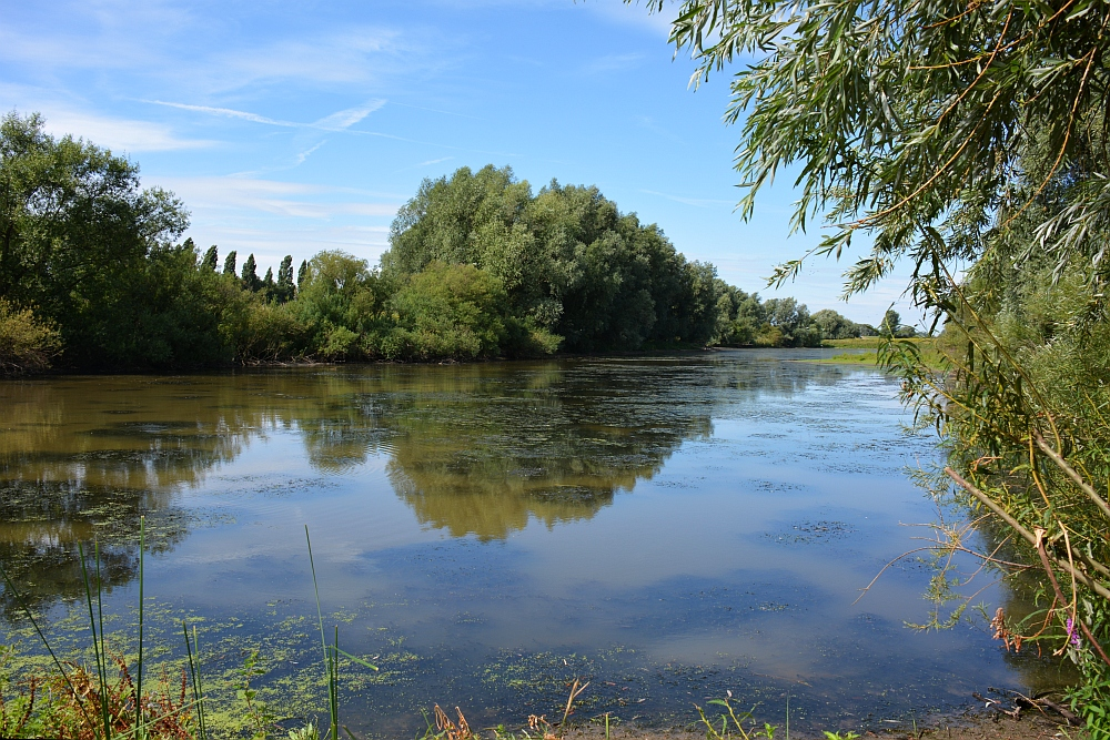 Walk of Wisdom van Winssen naar Nijmegen langs de Waal