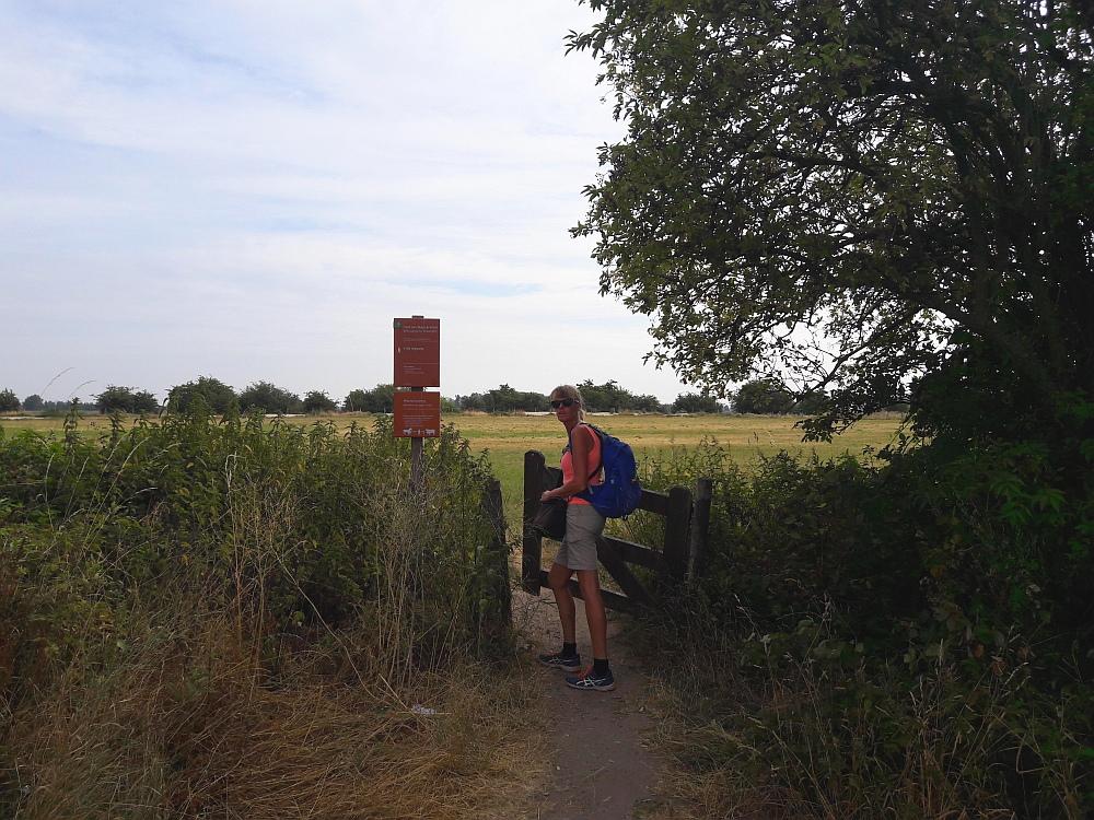 Walk of Wisdom van Winssen naar Nijmegen