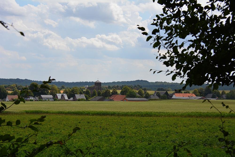 Walk of Wisdom via het Reichswald naar Groesbeek doorkijkje Reichswald