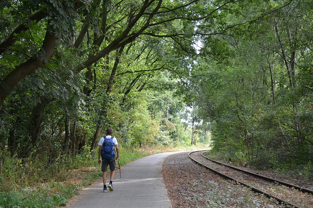 Walk of Wisdom via het Reichswald naar Groesbeek langs het oude spoor naar Kranenburg