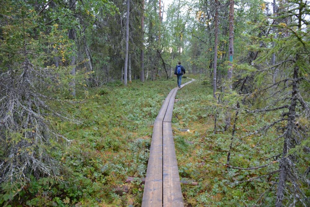 Wandelen in Finland Nationaal Park Oulanka Hidden Hurmos Trail