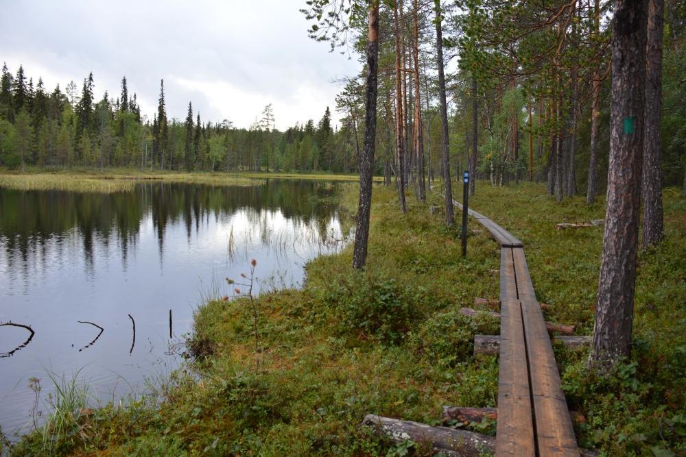 Wandelen in LaplandNationaal Park Oulanka vlonderpad langs meer