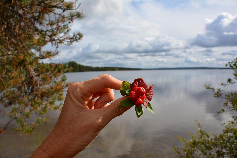 Fins Lapland, land van 1000 meren