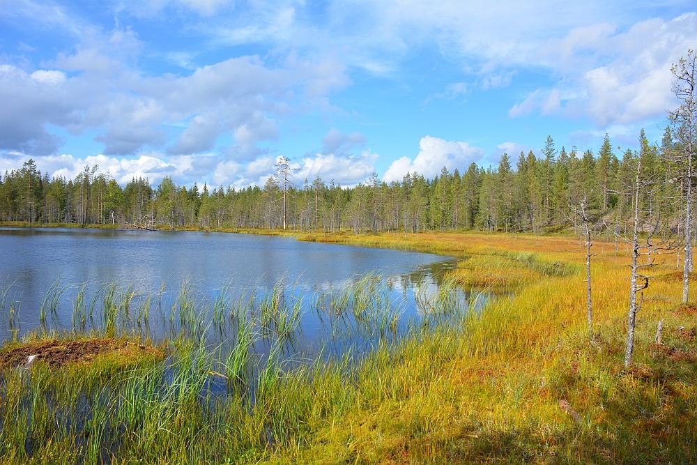 hike bij Salla vanuit Sallatunturin Tuvat meer