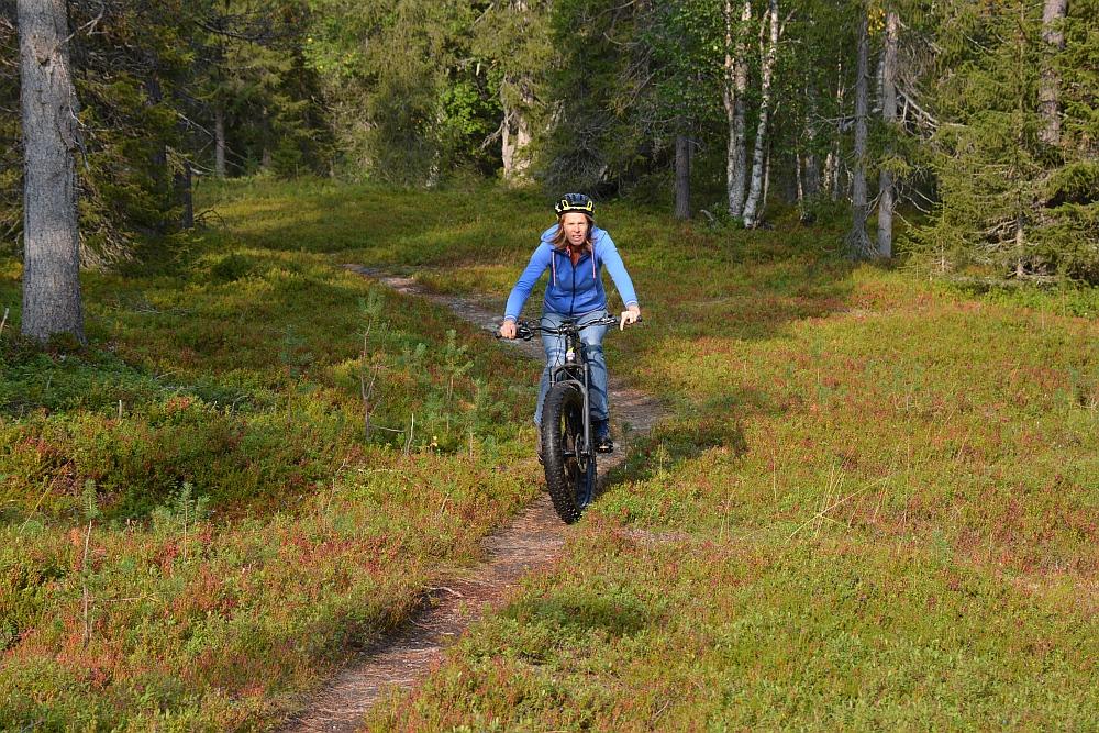 route voor elektrische mountainbike door bos Finland