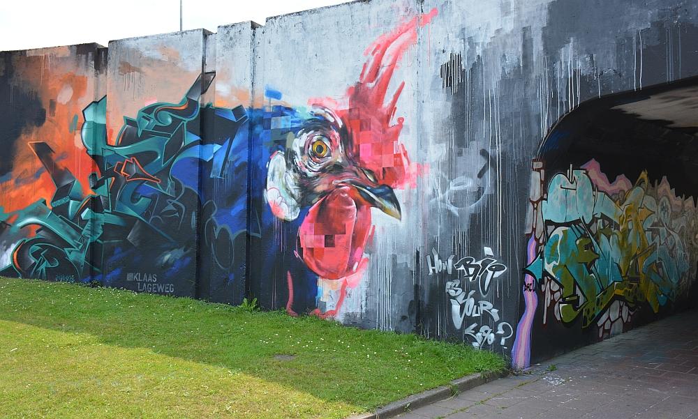 streetart in Eindhoven Berenkuil Klaas Lageweg