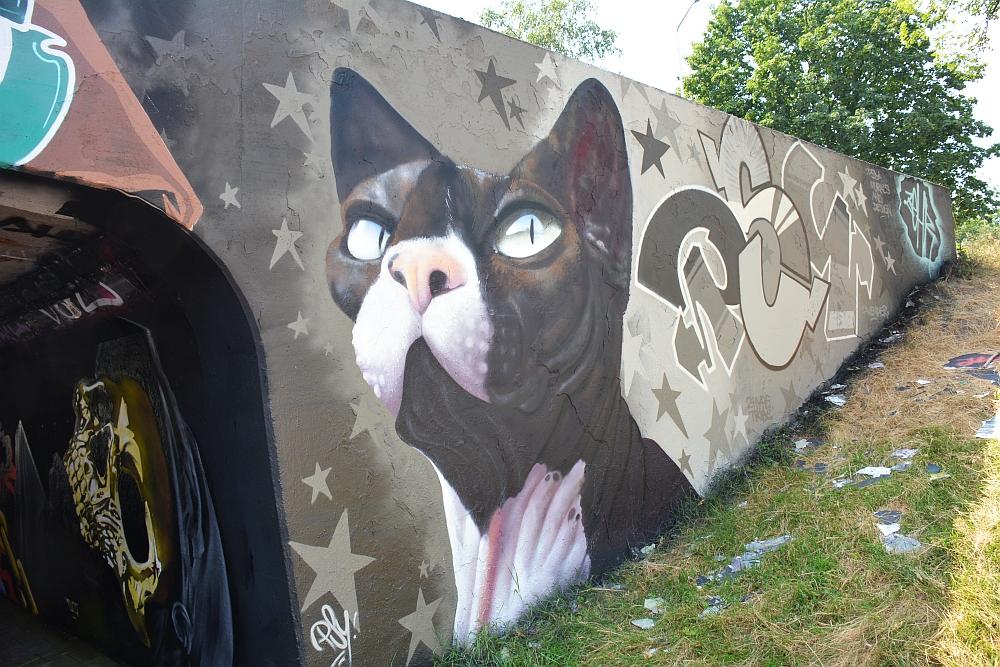 streetart in Eindhoven Berenkuil hond