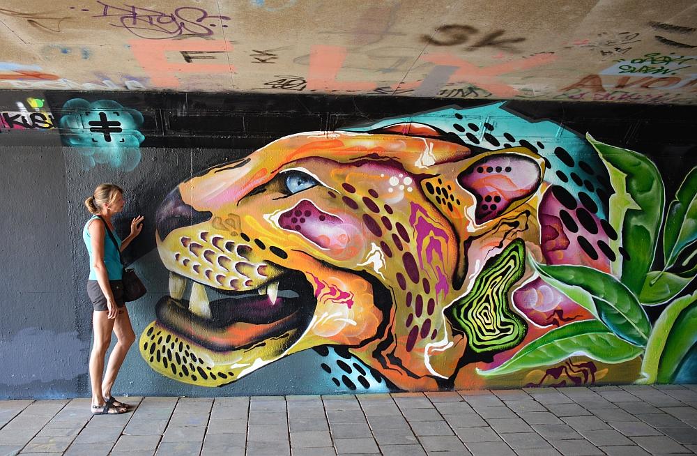 streetart in Eindhoven Berenkuil