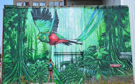 streetart in Eindhoven Quetzal op Philitelaan bij Strijp