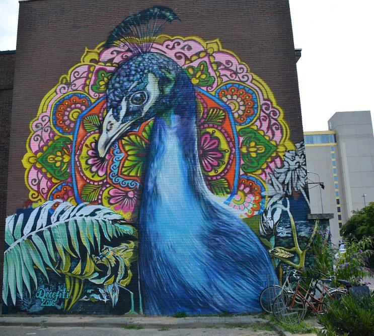 streetart in Eindhoven, pauw aan Vonderweg