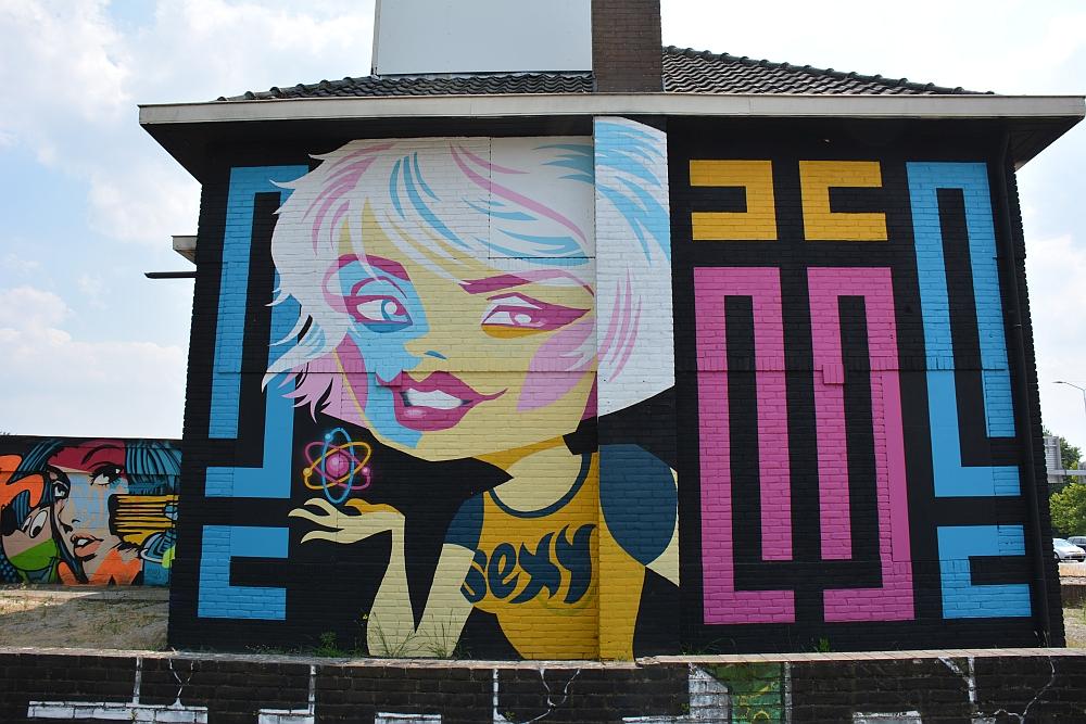 streetart in Eindhoven straatniveau Berenkuil