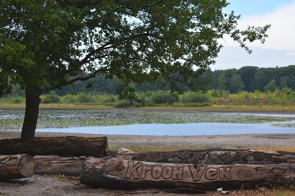 wandelen rond de Peelse heide mooi houtsnijwerk bij het Kroonven