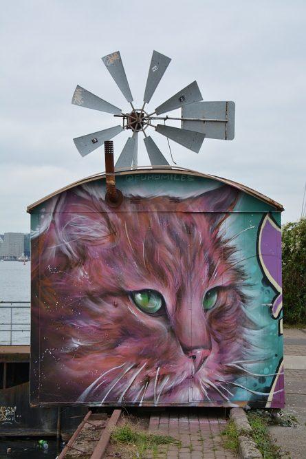 Street Art in Amsterdam NSDM Werf grote poes