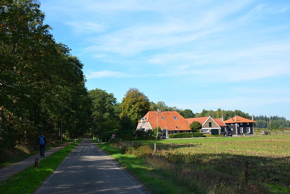 Trage tocht Hilvarenbeek door het boerenlandschap