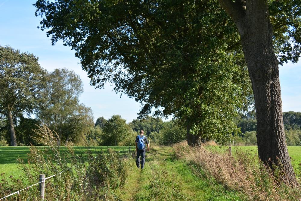Trage tocht Hilvarenbeek het Reggedal