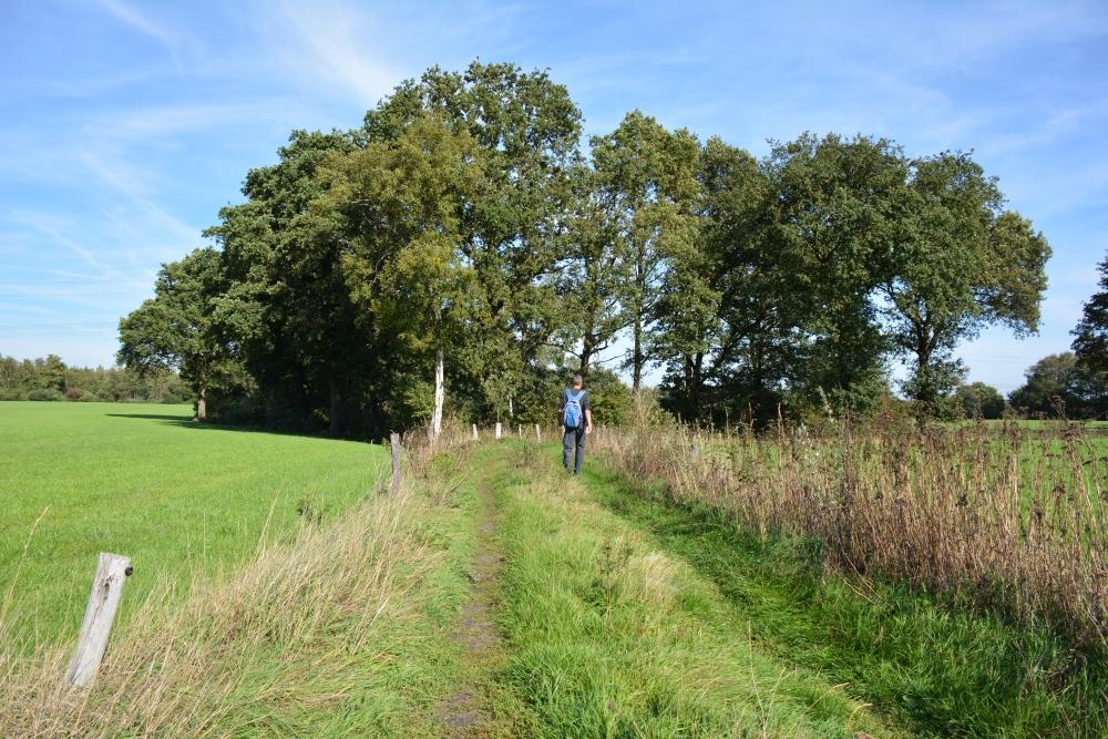 Trage tocht Hilvarenbeek tussen de velden