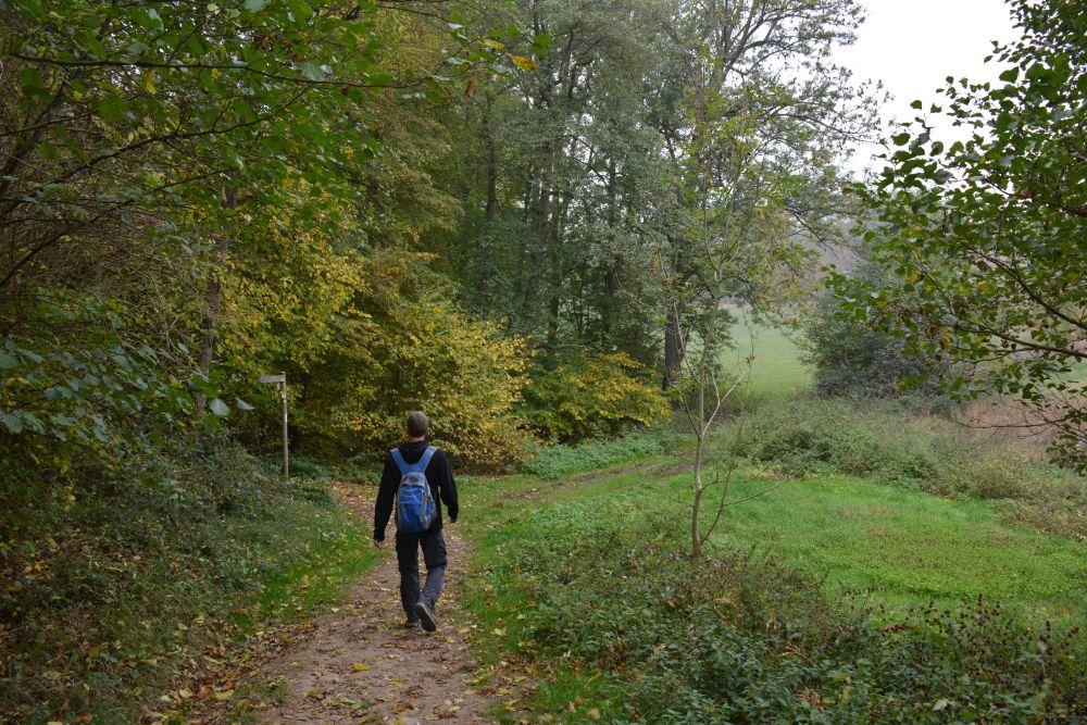Via de Eltzer Burgpanorama naar Burg Eltz Maifeld