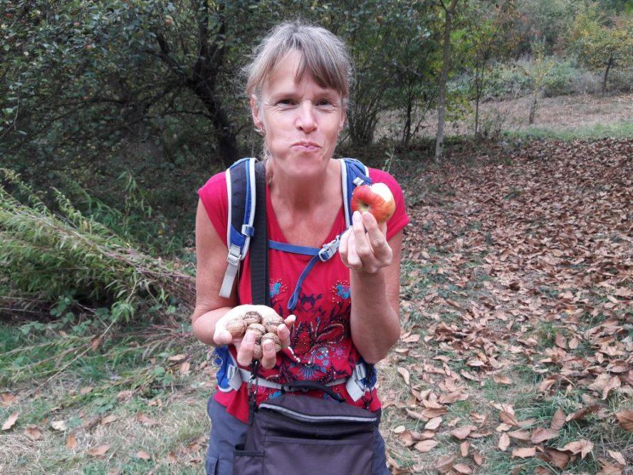 Via de Eltzer Burgpanorama naar Burg Eltz appeltjes en walnoten