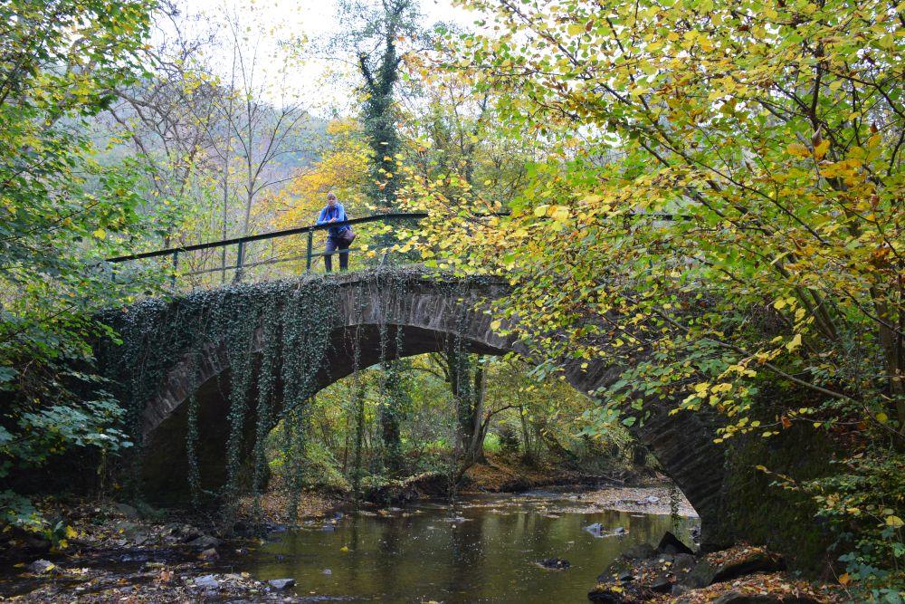 Via de Eltzer Burgpanorama naar Burg Eltz brug