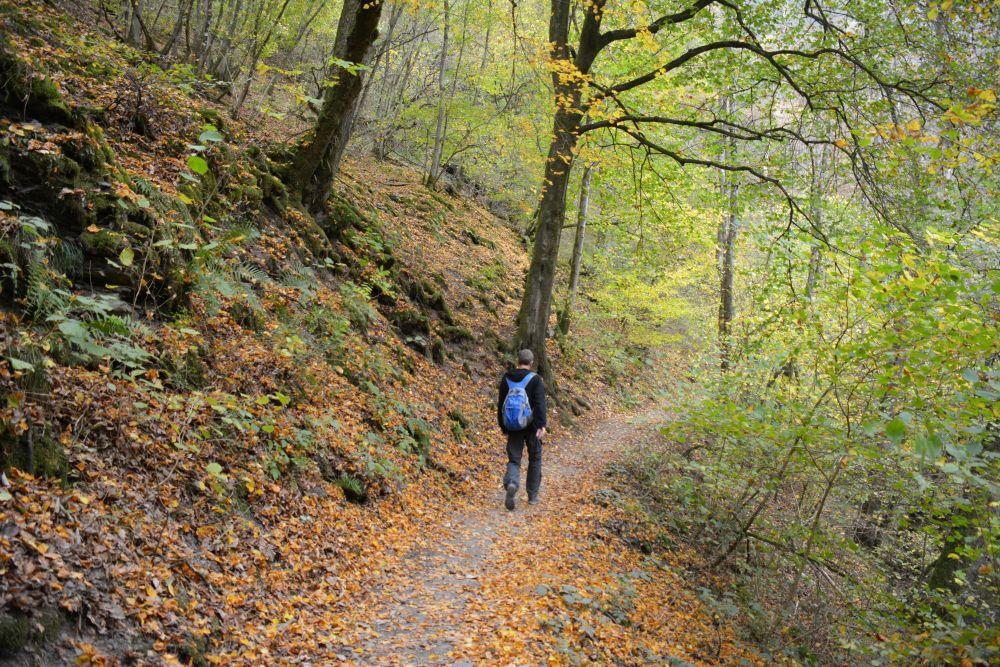 Via de Eltzer Burgpanorama naar Burg Eltz herfstwandeling