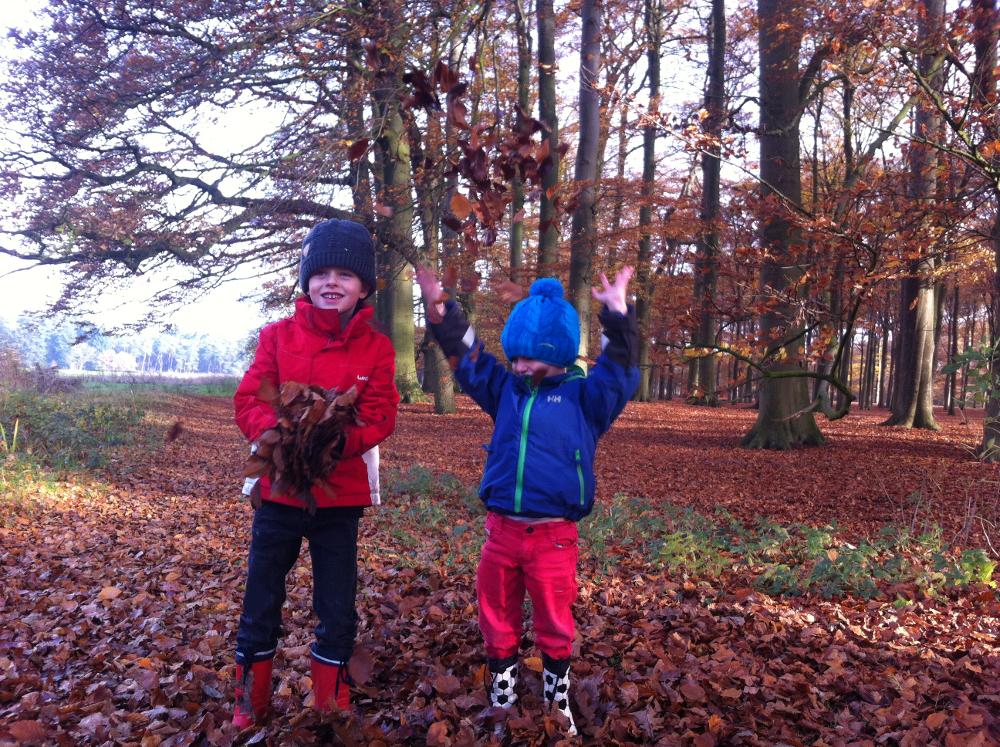 herfstwandelingen Nederland landgoed Beerschoten de Bilt