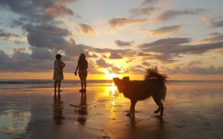 Op Playa Linda Anouk Pura Vida in Costa Rica