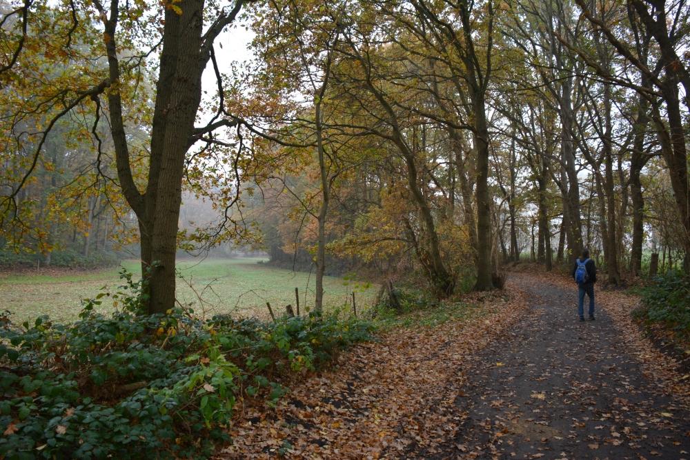 Zuiderwaterlinie wandelpad bij Bergen op Zoom