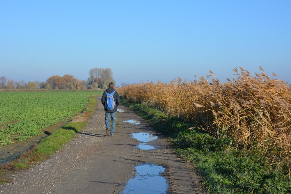 Zuiderwaterlinie wandelpad bij de Steenbergsche Vliet