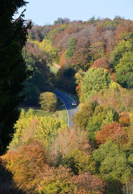 Eifelsteig herfstkleuren in de bossen