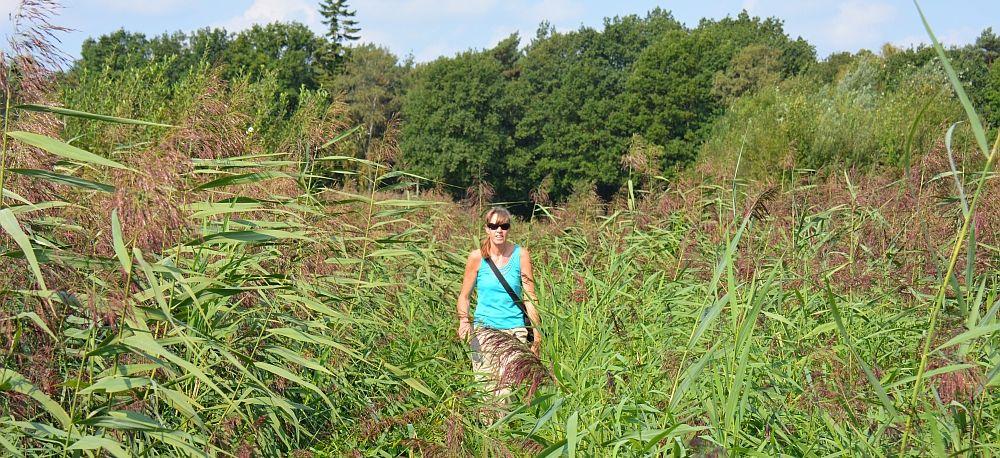 wandelen in Brabant pagina wandelblogger