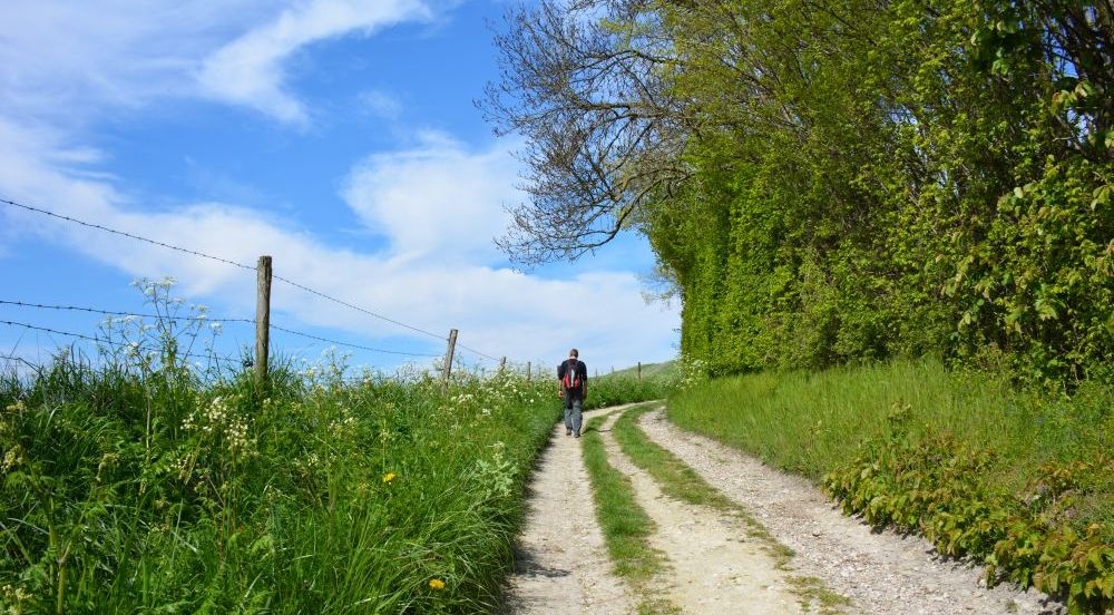 wandelen in Limburg pagina van wandelblogger Myfootprints