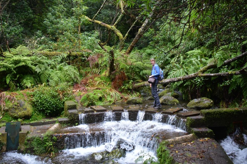 wandelen op Madeira Levada do rei waterval