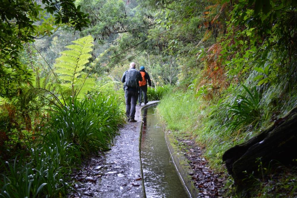 wandelen op Madeira de Levada do rei