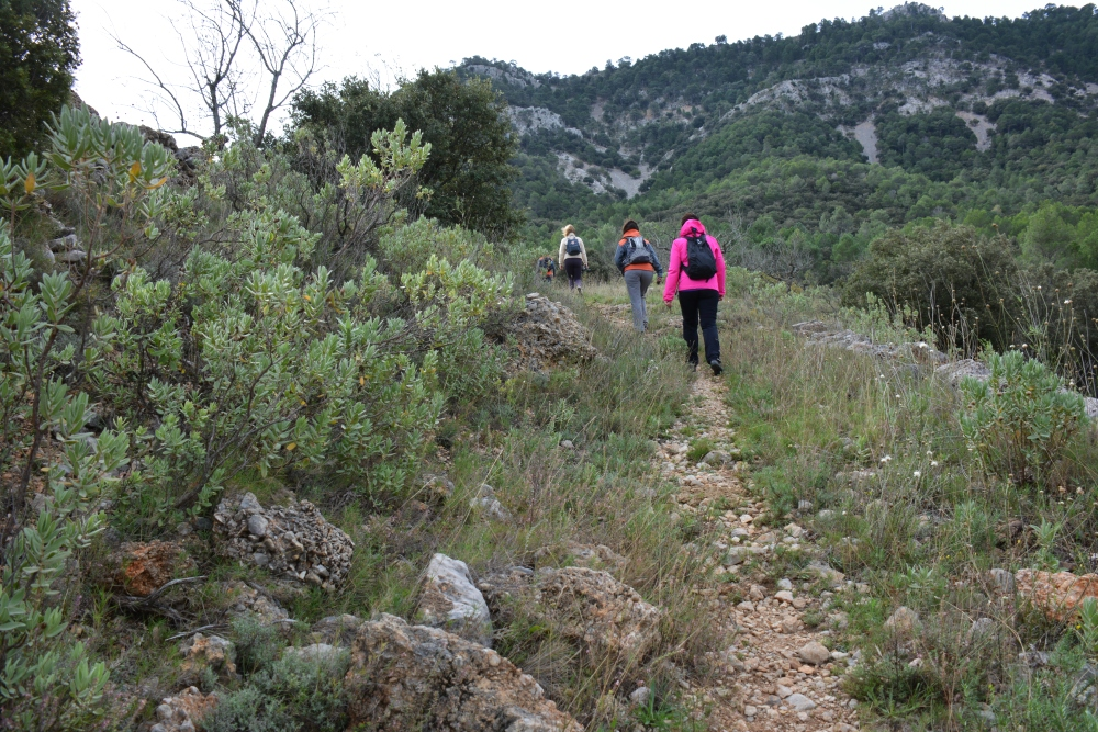 Wandelen in Parque Natural Tinença de Benifassà