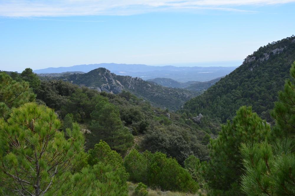 vergezicht in Parque Natural Tinença de Benifassà