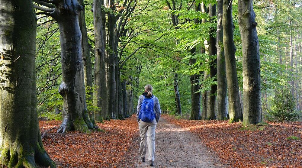 wandelen in Utrecht pagina van wandelblogger Myfootprints