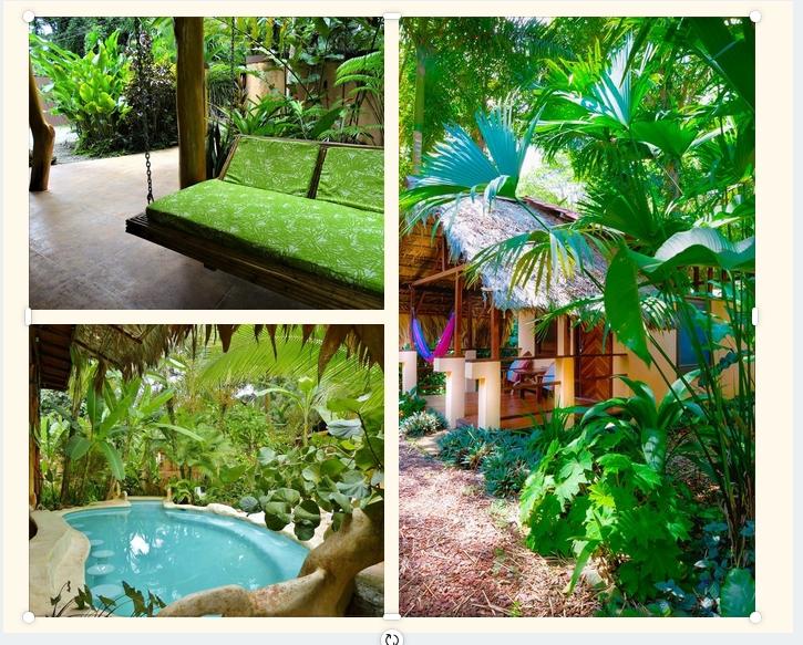 Puerto Viejo Lodge Caribe Town Costa Rica vakantie