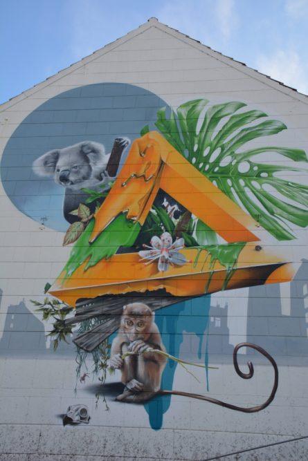 Street Art Heerlen aap en koala